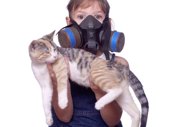 Allergia al gatto sintomi