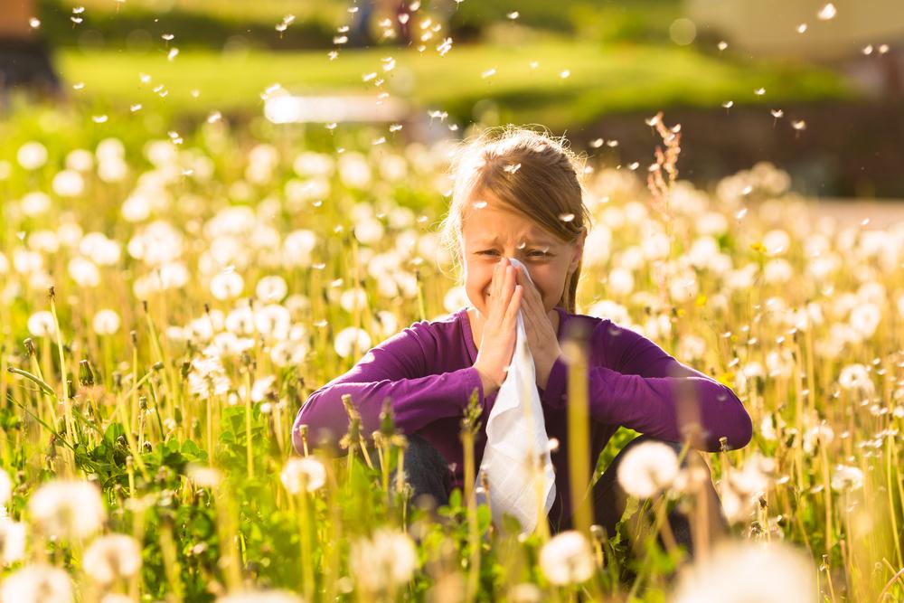 Calendario allergie stagionali